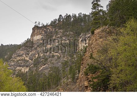 Black Hills National Forest, Sd, Usa - May 31, 2008: Wider And Longer Shot Of Brown-beige-black Rock