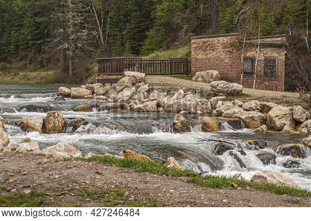 Black Hills National Forest, Sd, Usa - May 31, 2008: Closeup Of Series Of Rapids On Creek Among Brow