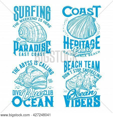 Ocean Coast Seashells Retro T-shirt Prints. Surfing, Scuba Diving And Snorkeling Club, Summer Vacati