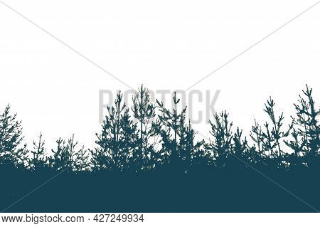 Silhouette Of A Pine Forest And Sky. Place For The Text