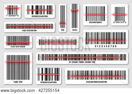 Set Of Product Barcodes With Red Scanning Line. Identification Tracking Code. Serial Number, Product
