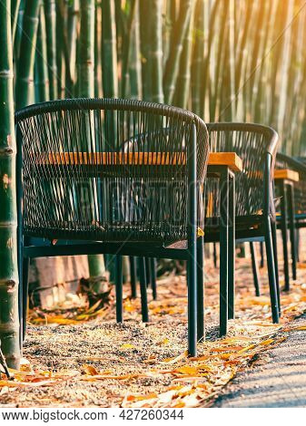 Chairs And Tables To Sit And Relax Beside The Path In The Natural Green Bamboo Garden. Relaxation Vi
