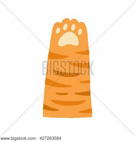 Cute Tabby Ginger Cat Paw With Soft Pads. Funny Raised Up Kitten Foot In Doodle Style. Adorable Anim