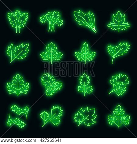 Parsley Icons Set. Outline Set Of Parsley Vector Icons Neon Color On Black