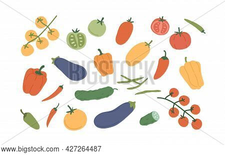 Set Of Fresh Ripe Vegetables. Organic Healthy Veggies. Bell Pepper, Chili, Pod Radish, Tomato, Cucum