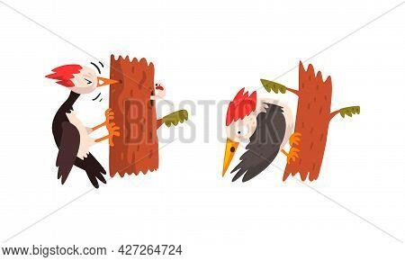 Funny Woodpecker Bird On Tree Trunk Set, Woodland Bright Bird Cartoon Vector Illustration