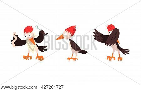 Cute Woodpecker Bird Set, Woodland Bright Woodpecker Cardinal Bird Cartoon Vector Illustration