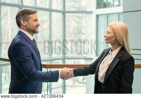 Side view of business partners looking at each other and shaking hands, they greeting each other at office