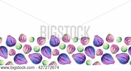 Background With Space And Border Of Watercolor Figs On Lower Edge. Hand Drawn Decoration, Image Of B