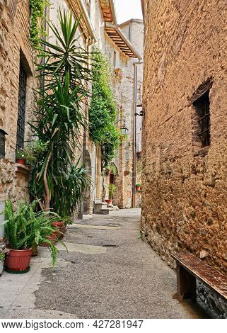 Bevagna, Perugia, Umbria, Italy: Picturesque Narrow Alley With Ancient Houses And Plants In The Old
