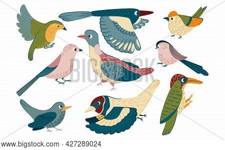 Birds Set Vector Illustration In Cartoon Style. Flying Little Cute Birds Collection Of Robin, Jay, M