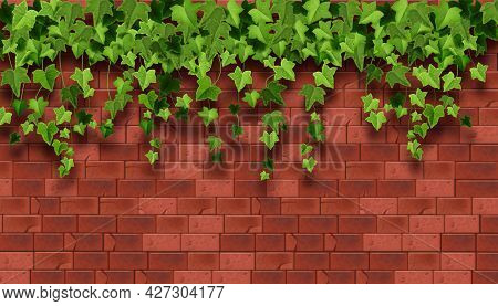 Ivy Plant Vector Background, Red Brick House Wall Texture, Climbing Vine Leaf, Garden Greenery Illus