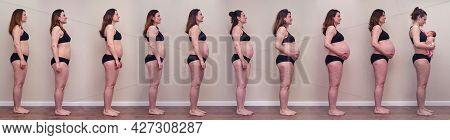 All Stages Of Pregnancy From The First To The Ninth Month And The Birth Of A Newborn Baby. A Pregnan