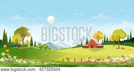 Spring Landscape In Village With Green Field, Flower And Butterfly Meadow On Hills With Blue Sky, Ve