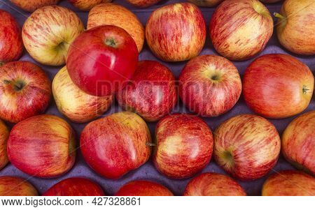 Creole Apple In The Traditional Colombian Market - Malus Domestica