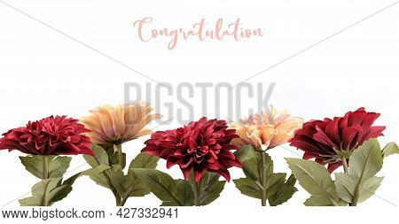 Pink Artificial Flowers In White Pots Isolated On A White Background