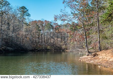 The Inlet Area Of The Lake Surrounded By The Woodlands With Floating Leaves On The Surface Of The Ca