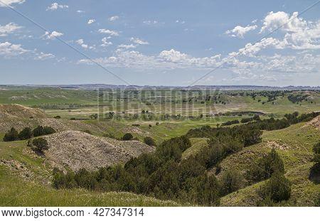 Badlands National Park, Sd, Usa - June 1, 2008: Vast Green Prairie Landscape With Dark Tree Foliage