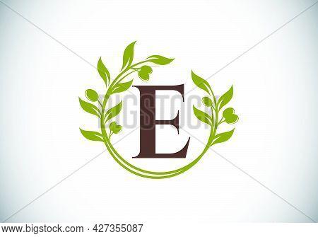 E.eps