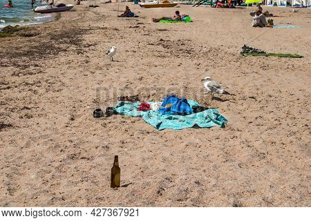 Seagulls, Blankets, Towels, Shoes, Vacationers And An Empty Bottle On The Beach In The Village Of Za