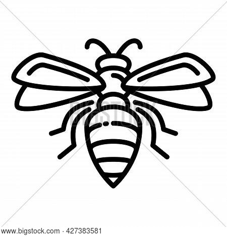 Flying Wasp Icon. Outline Flying Wasp Vector Icon For Web Design Isolated On White Background