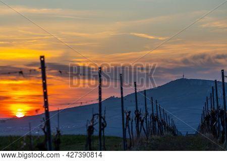 Sunrise in Palava with Devicky ruins, Southern Moravia, Czech Republic