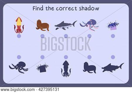 Matching Children Educational Game With Sea Animals - Squid, Fur Seal, Hammerhead Shark, Octopus. Fi