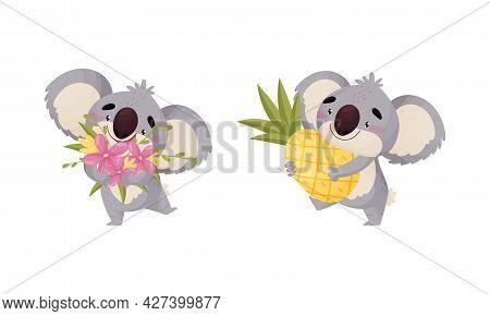 Cute Gray Koala Bear Carrying Bunch Of Flowers And Pineapple Vector Set