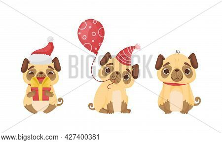 Cute Pug Dog Puppy Holding Balloon And Gift Box Vector Set