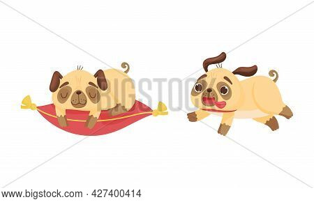 Cute Pug Dog Puppy Sleeping On Pillow And Running With Sticked Out Tongue Vector Set