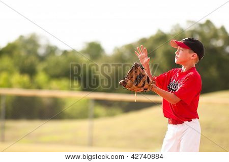 Little League Baseball Player Catching The Ball.