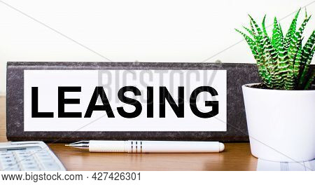 On A Wooden Table There Is A Folder For Documents With A Leasing Dough, A Green Plant In A Pot, A Pe