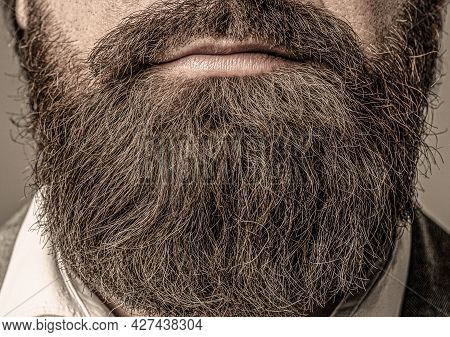 Closeup Of Bearded Mans. Male With Mustache Growing. Perfect Beard. Close-up Of Young Bearded Man. C