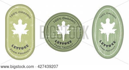 Three Logo Patches With Lettuce And Texture