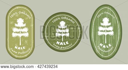 Three Logo Patches With Kale And Texture