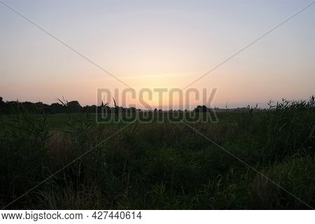 Colourful Sunset With Reeds And A Meadow In The Foreground