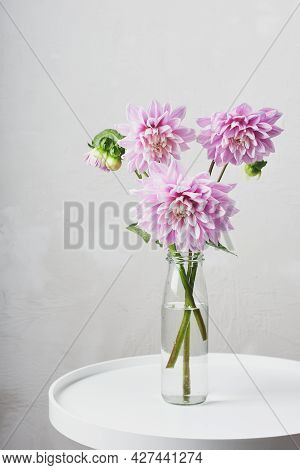 Pink Dahlia Flowers In A Glass Bottle On A White Table.