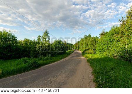Automotive Asphalt Road In The Summer Evening Forest. Summer Evening