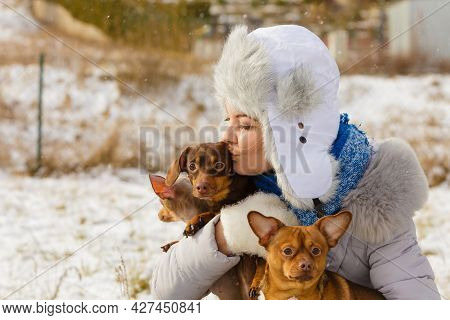 Young Woman Having Fun Outside In Snow. Female Playing With Her Small Purebreed Dogs Puppies In Cold