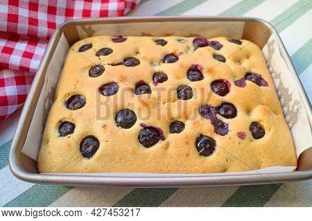 Fresh Baked Homemade Blueberry Cake In The Baking Pan