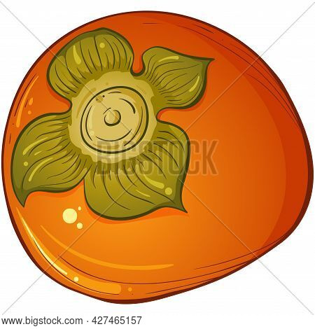 Whole Persimmon. Bright Vector Of Colorful Whole Juicy Persimmon. Vector Illustration Isolated On Wh