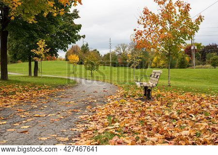 Autumn In The Park. Fallen Leaves Near Bench And Road In A Local Park .