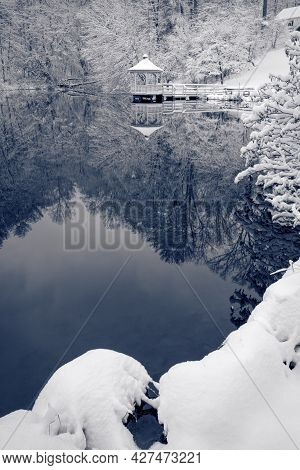 A Beautiful Winter Scene As Fresh Fallen Snow Flocks The Trees Around This Tranquil Pond
