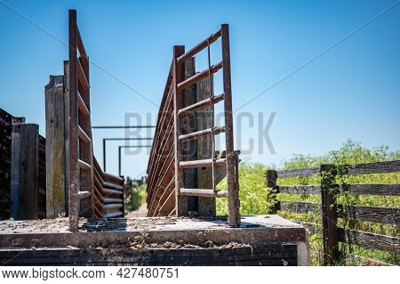 Metal Elevated Cattle Chute In The Rural Midwest