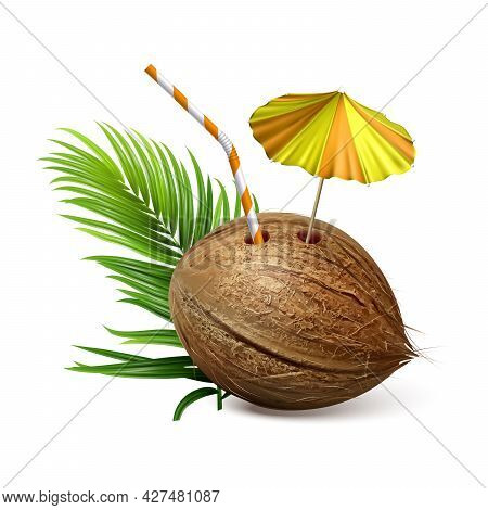 Coconut Tropical Natural Drink And Branch Vector. Coconut Exotic Cocktail With Straw And Decorated U