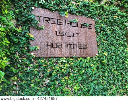 Hua Hin Thailand  May 26 2021 Vintage Signage For Tree House Coffee Shop With Green Leaves Backgroun