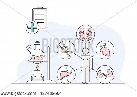 Medicine With Body Internal Organ Examination And Checkup Line Vector Illustration