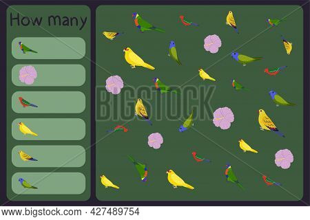 Kids Mathematical Mini Game - Count How Many Parrots And Tropical Florals - Loriinae, Hibiscus, Kaka