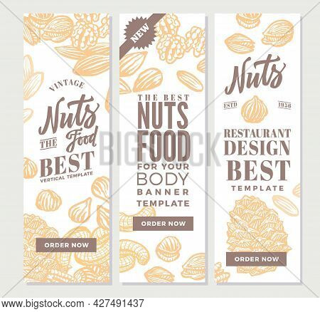 Vintage Nuts Food Vertical Banners With Various Types And Sorts In Hand Drawn Style Vector Illustrat