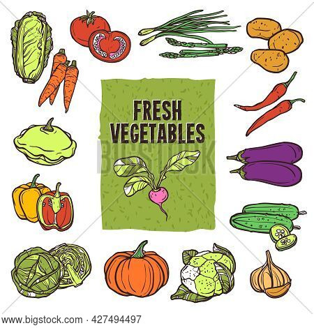 Vegetable Sketch Icons Set With Cauliflower Asparagus Cabbage And Garlic Isolated Vector Illustratio